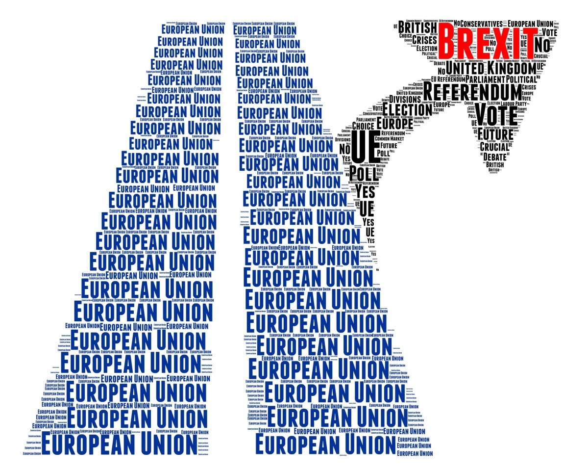 Brexit – What next ?